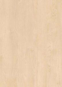 H1733-ST9 Mainau Birch